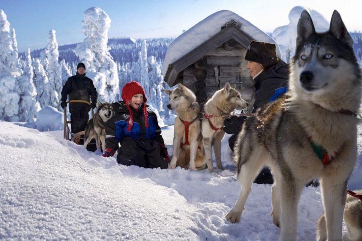 Eenoudervakantie wintersport Zweden