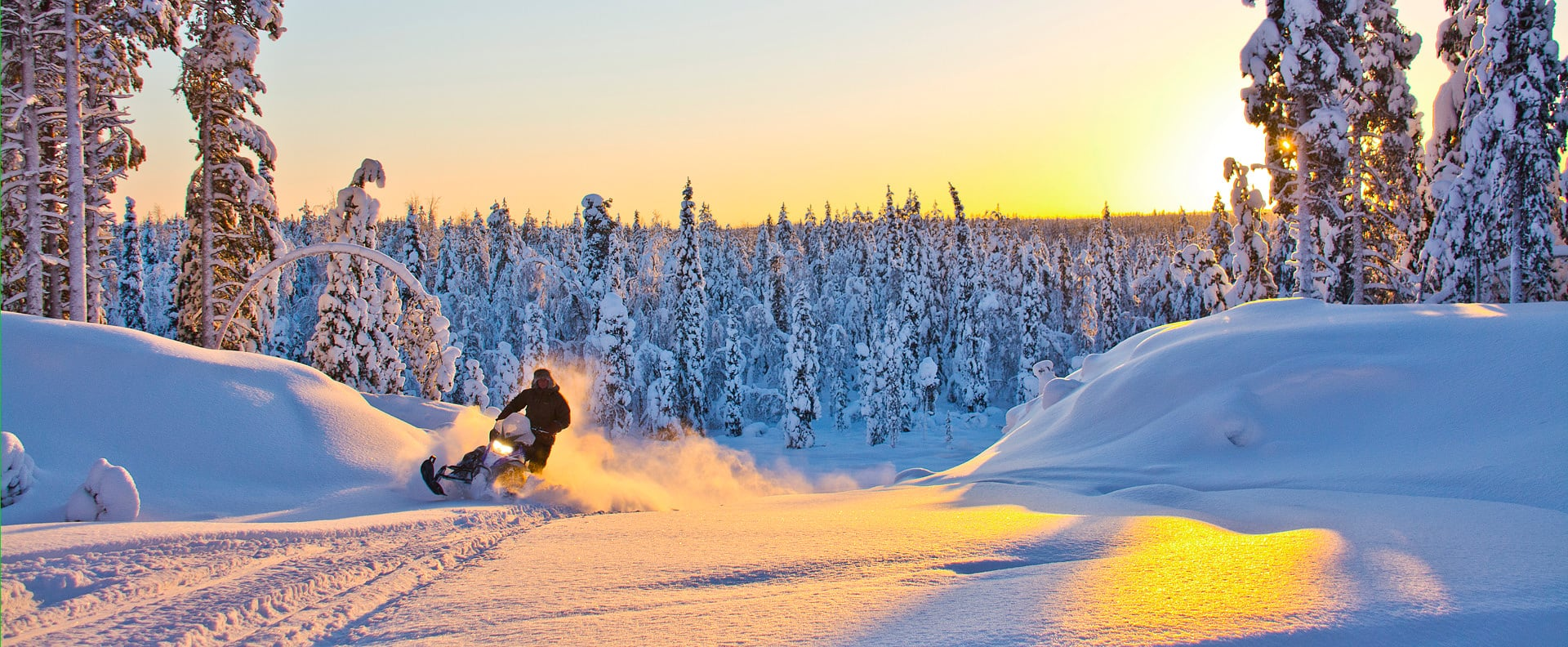 Single Reis Zweden Johannisholm Inclusief skipas, Hondenslee en Sneeuwscooter Safari